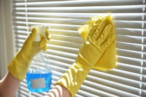 Window Cleaners Des Plaines IL